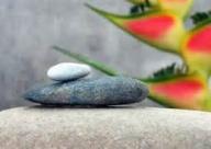 carátula armonía zen