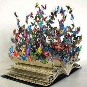 libro mariposas
